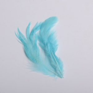 plumes bleu