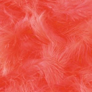 Plumes corail