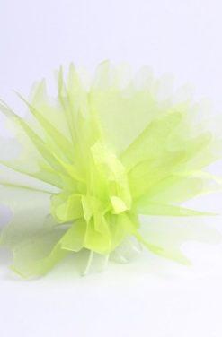 Tulle à dragées vert pistache